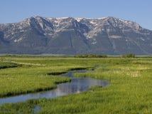 Culver liten vik som är röd vaggar den nationella djurlivfristaden för sjöar arkivbild