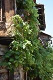 Cumalikizik-Dorf, Bursa, die Türkei Stockbild