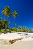 Cumana Bay. In Trinidad, Caribbean Royalty Free Stock Photos