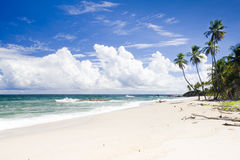 Cumana Bay. In Trinidad, Caribbean Royalty Free Stock Photo
