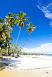 Cumana Bay Royalty Free Stock Photos