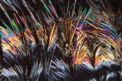 Cumarinkristalle unter dem Mikroskop Stockbilder