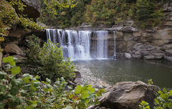 Cumberland Falls. A waterfall in the Cumberland River surrounded by rocks and plant life Royalty Free Stock Images