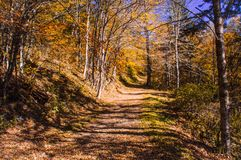 Cumberland Gap overziet stock afbeeldingen