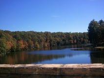 Cumberland park Zdjęcie Stock