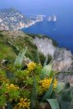 Cumbre de Capri imagenes de archivo