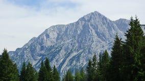 Cumbre hermosa de las montañas en verano Fotografía de archivo