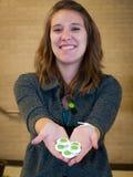 Cumbre verde de 2012 escuelas Imagen de archivo