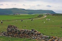 Cumbria Lizenzfreie Stockfotografie
