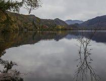 Cumbria, Angleterre - lac et arbres, la réflexion un jour sombre photographie stock