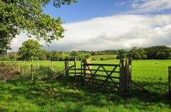 cumbria Eden odpowiada dolinę zdjęcia royalty free