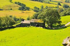 Cumbrian Farm. Stock Image