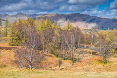 Cumbrian landscape. Landladies from Holme Fell Cumbria English Lake District Stock Image