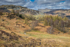 Cumbrian landscape. Looking towards the Langdales Cumbria England Stock Photo