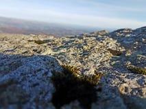 cumbrian liggande Arkivfoto