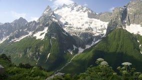 Cume da montanha Foto de Stock