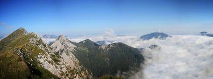 Cume da montanha alta escondido nas nuvens durante o nascer do sol, Koschuta, Eslovênia Fotos de Stock