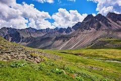 Cume da tundra da montanha imagens de stock