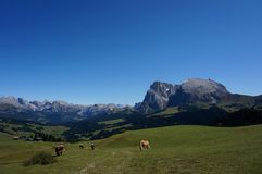 Cume e montanhas panorâmicos idílico maravilhosos nas dolomites e em um céu azul claro Imagens de Stock Royalty Free