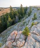 Cume rochoso na garganta perdida acima da água da luz do amanhecer na escala do cavalo selvagem das montanhas de Pryor em Wyoming Imagem de Stock Royalty Free