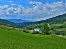 Cume-vista austríaca à paisagem alpina Fotos de Stock