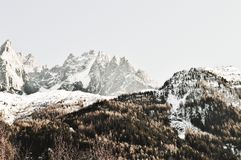 Cumes dos montes e do suíço com neve Fotos de Stock Royalty Free