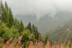 Cumes montanha, vista da estrada alpina alta Fotografia de Stock Royalty Free