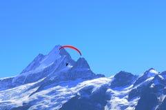 Cumes suíços: Parapente no pico de montanha de Schreckhorn perto de Grindelwald imagens de stock royalty free