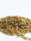 Cumin. Spices for tasty cooking Royalty Free Stock Photography