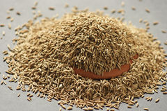 Cumin. Can be used to season many dishes, either ground or as whole seeds, as it draws out their natural sweetnesses. It is traditionally added to curries Royalty Free Stock Photo