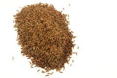 Cumin Stock Photo