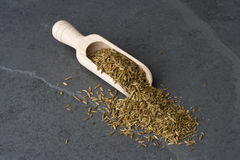 Cumin Photo stock