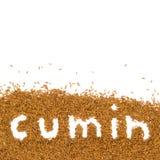 Cumin Stock Image