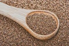 Cumin avec la cuillère en bois Photo libre de droits