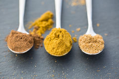 Cumin, coriander and nutmeg, good for osteoarthritis, joint pain Royalty Free Stock Images