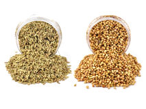 Cumin and dhania. Hot spicy items - cumin and dhania Stock Photo
