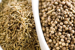 Cumin and koriander Royalty Free Stock Image