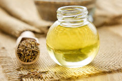 Cumin oil Royalty Free Stock Photography