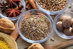 Cumin and other spices Stock Photography