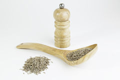Cumin and pepper Royalty Free Stock Photo