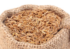Cumin on sack bag Royalty Free Stock Photo