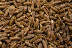 Cumin seed Royalty Free Stock Image