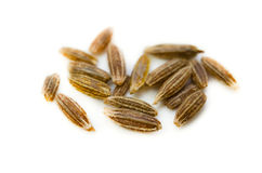 Cumin seed Royalty Free Stock Photography