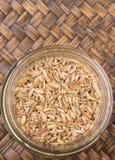 Cumin Seed II Stock Image