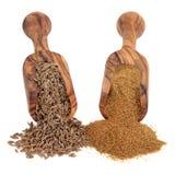 Cumin Seed and Powder Royalty Free Stock Image