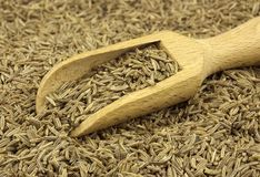 Cumin seed scattered with a wooden scoop. Food ingredients: cumin scattered with a wooden scoop royalty free stock images