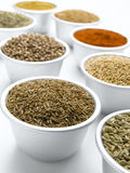 Cumin Seed Stock Photo