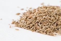 Cumin seeds. Pilr of cumin seeds on white fabric Stock Photos