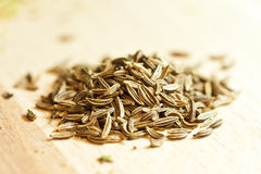 Cumin seeds royalty free stock photos