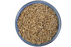 Cumin seeds. In blue dish Stock Images